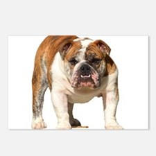 Bulldog Items Postcards (Package of 8)