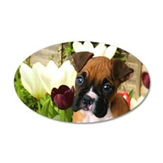 Boxer Puppy 20x12 Oval Wall Decal