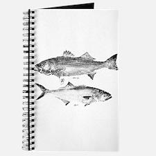 Striper Bass and Bluefish Journal