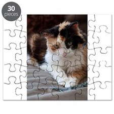 Calico Kitty Puzzle
