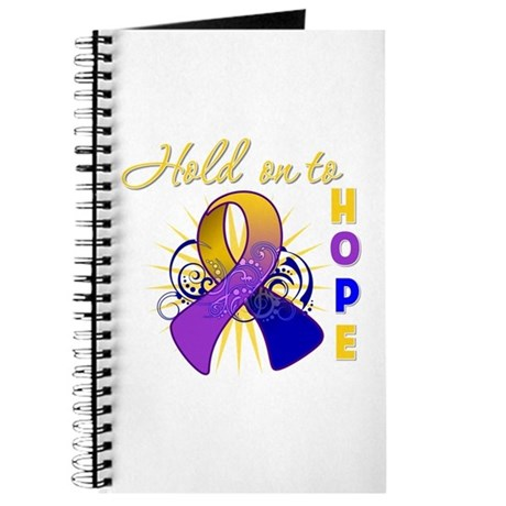 Bladder Cancer Journal