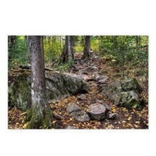 Rocky Trail Postcards (Package of 8)