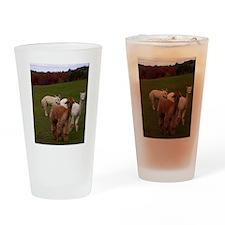 Three Alpacas Drinking Glass