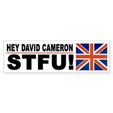2012 Election Stupidity Car Sticker