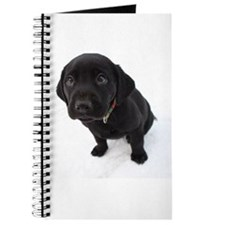 Cute Labrador puppy Journal