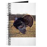 Beautiful Turkey Journal