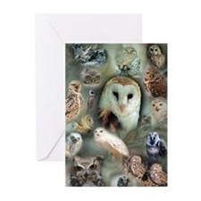 Happy Owls Greeting Cards (Pk of 10)