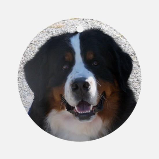 Handsome Berner Ornament (Round)