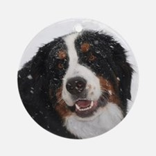 Snowy Berner Ornament (Round)