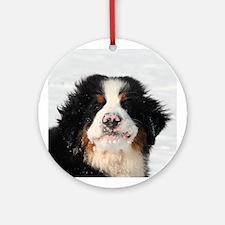 Berner Puppy Ornament (Round)