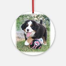 Bernese Puppy Ornament (Round)
