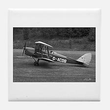 Tiger Moth Tile Coaster