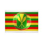 Old Hawaiian Flag Design Rectangle Magnet (100 pac