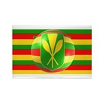 Old Hawaiian Flag Design Rectangle Magnet