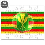Old Hawaiian Flag Design Puzzle