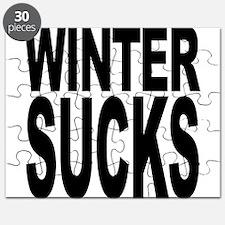 Winter Sucks Puzzle