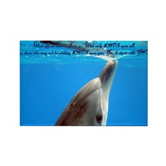 Wish Only Love Rectangle Magnet (10 pack)