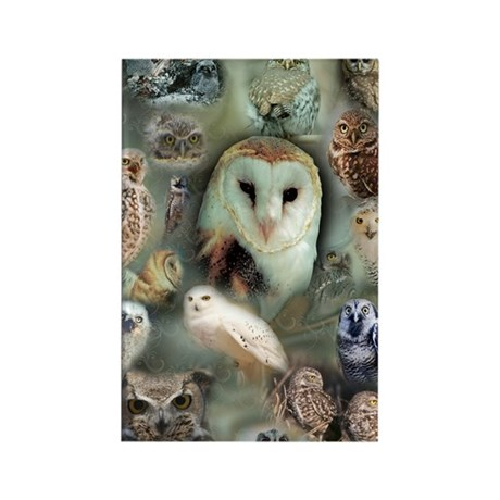 Happy Owls Rectangle Magnet (10 pack)