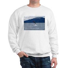 Take the Leap Sweatshirt