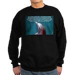 Special Agent Sweatshirt (dark)