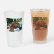 Breezy Vizsla Drinking Glass