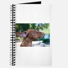 Breezy Vizsla Gifts Journal