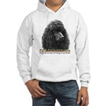 Pets Pictured.com Promo Hooded Sweatshirt