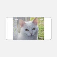 Sugar Kitty Collection Aluminum License Plate