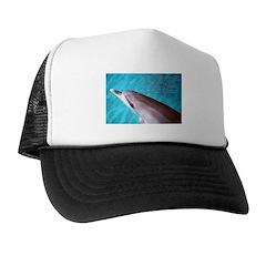 Integration Trucker Hat