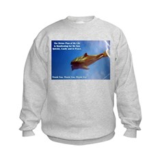 Divine Plan Sweatshirt