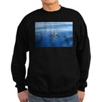 Connect With Spirit Sweatshirt (dark)