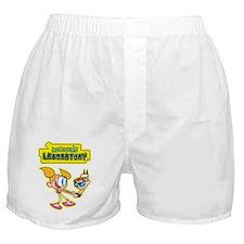 Dexter's Laboratory Boxer Shorts