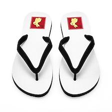 Bunny - Chinese Zodiac Flip Flops