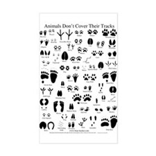 North American Animal Tracks Decal