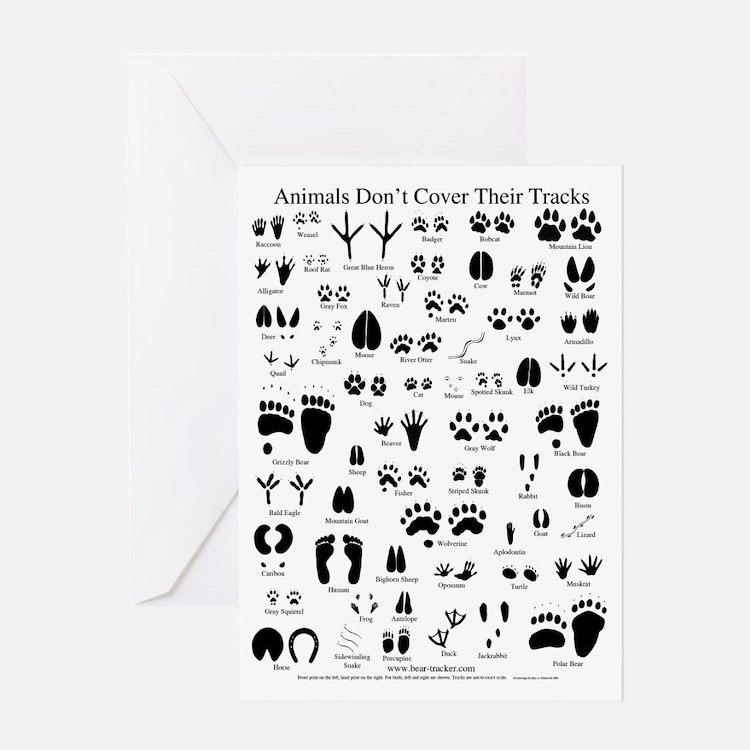 North American Animal Tracks Greeting Card