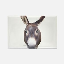 Donkey In Your Face Rectangle Magnet