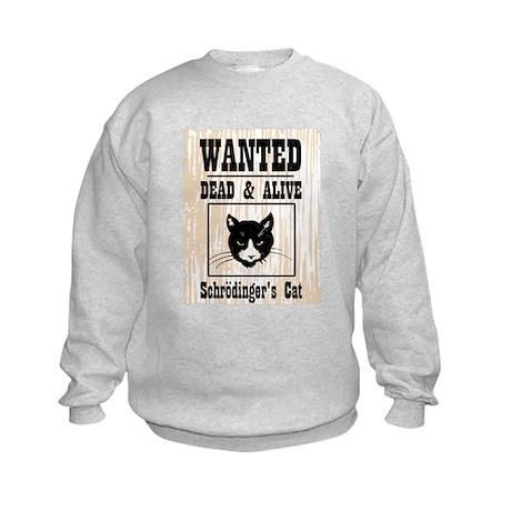 Wanted Schrodingers Cat Kids Sweatshirt