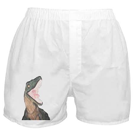 Velociraptor Boxer Shorts