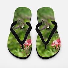 Black-chinned HB Flip Flops