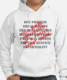 Equal Rights Void Hoodie