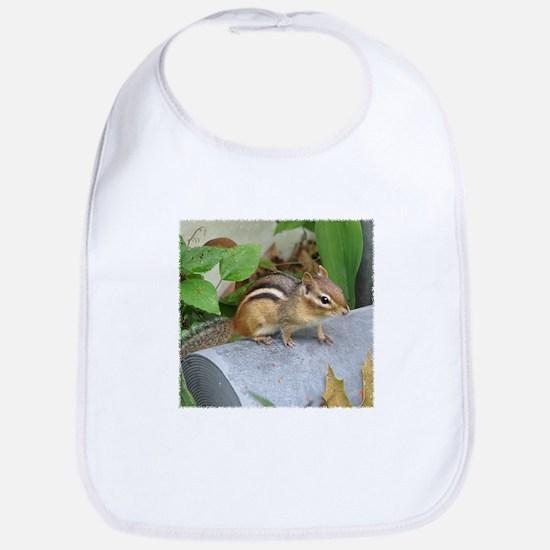 Garden Bandit Bib