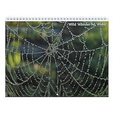 Wild Wonderful Webs Wall Calendar