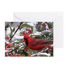 Christmas Cardinal Greeting Cards (Pk of 10)
