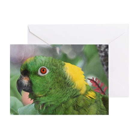 Yellow Nape Amazon Parrot Greeting Card