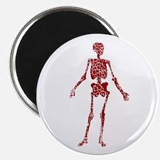 Worn, Skeleton Magnet
