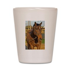 Your Horse (is a star) ! Shot Glass