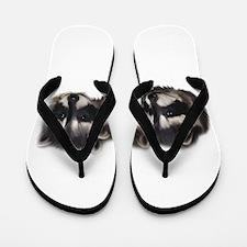 Racoons Flip Flops