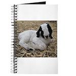 Boer Goat Kid Journal