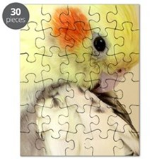 Unique Avian Puzzle