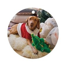 Hungarian Vizsla Christmas Ornament (Holly)